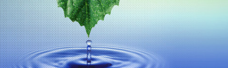 Ambiente e salute: ultimi studi in Italia