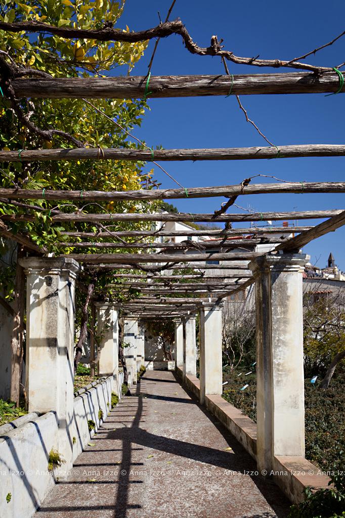 Giardini_della_MINERVA_AnnaIzzo (4)